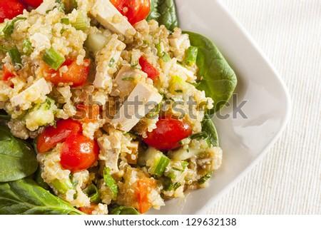 Organic Vegan Quinoa with vegetables like tomato, tofu, and cucumber - stock photo