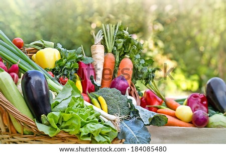 Organic vegetables in wicker basket - stock photo