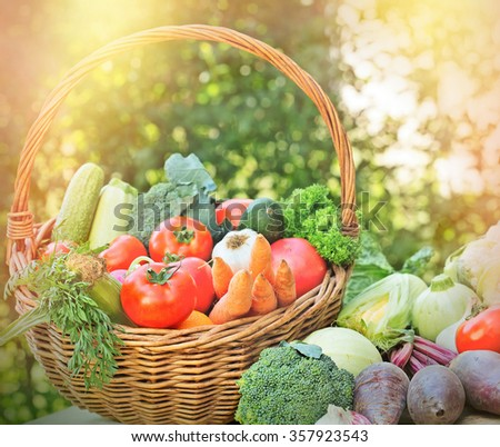 Organic vegetableS in wicker basket - vegetables lit by sunlight