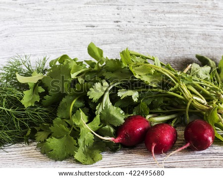 Organic vegetables: radish, fennel and coriander old weathered wooden surface - stock photo