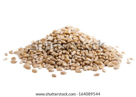 Organic wheat isolated on white background