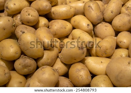 organic young potatoes sold on market