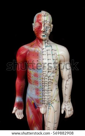Oriental Medicine model in hospital , figure on black background