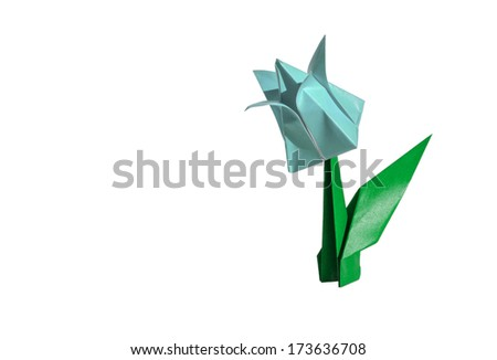 Origami cyan flower, tulip, isolated on white