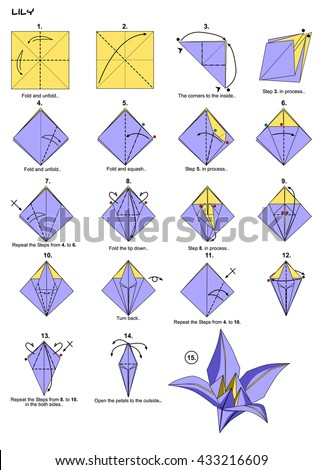 Origami Flower Lily Instructions Steps