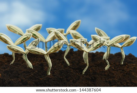 origami sprouts made from 100 dollar bill with blue sky background - stock photo