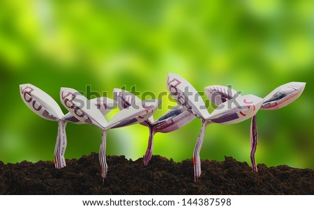 origami sprouts made from 500 Euro bill with green  background - stock photo