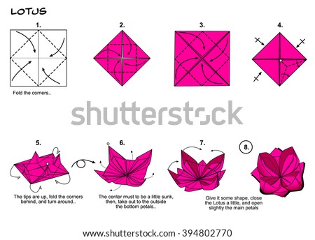 68 Origami Lotus Flower Instructions In English Origami