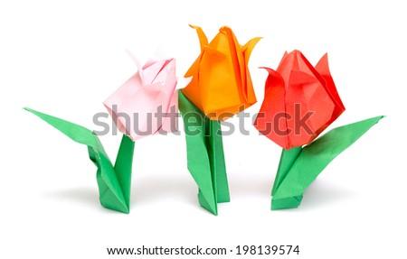 Origami tulip isolated on white - stock photo