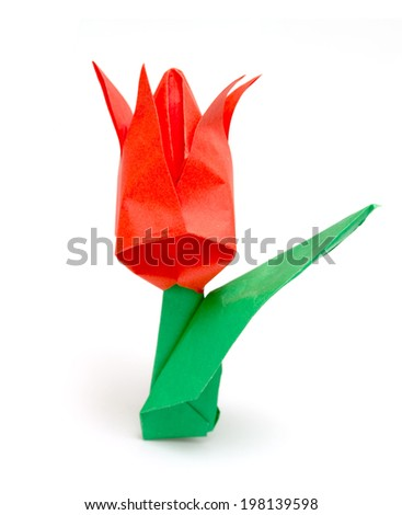 Origami tulip isolated on white