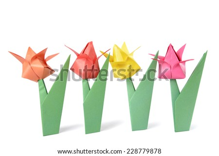 Origami tulip isolated over white background