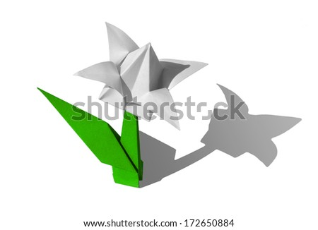 Origami white flower, tulip, isolated on white - stock photo