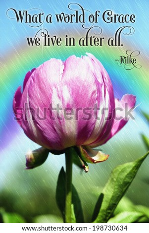 original art, acrylic realism painting of peony and rainbow with inspirational text - stock photo