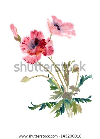 original art, watercolor painting of red poppy plant, Asian style - stock photo