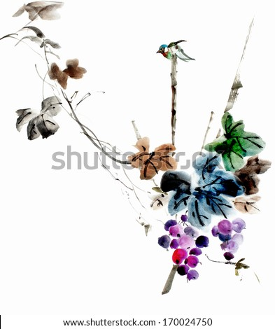 original art, watercolor painting of tiny, colorful bird on branch with grapes - stock photo