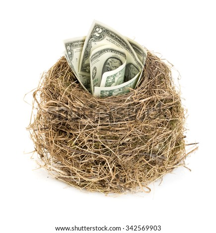 Original bird's nest with dollar bills. New business starting by banknotes. Business concept.