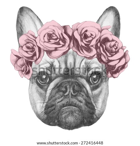 Original drawing of French Bulldog with roses. Isolated on white background - stock photo