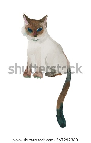 Original watercolor cartoon style siamese cat shildren illustration wet style isolated on white background
