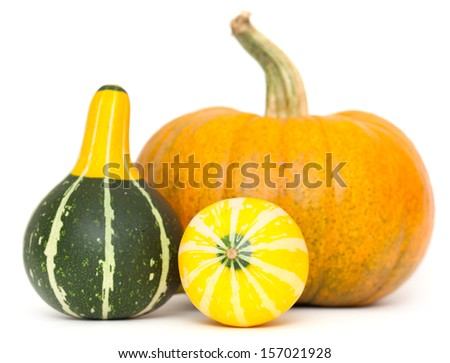 ornamental gourds and pumpkin isolated on white background - stock photo