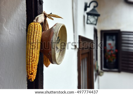 Ornamental rustic ceramic plate and corn hanging on a white wall