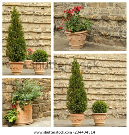 ornamental vintage terracotta pots with plants - collage, images from street and piazzas in Florence, Tuscany, Italy, Europe - stock photo
