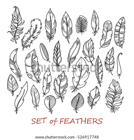 Ornate Set of Stylized and Abstract Zentangle Feathers. Elements for Design and Coloring Pages.