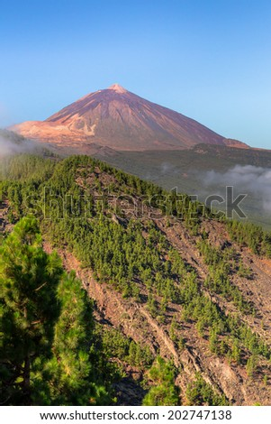 Orotava Valley with the Teide at the end, Tenerife. - stock photo