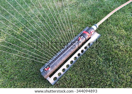 Oscillating sprinkler watering fresh mown lawn in the evening autumn garden