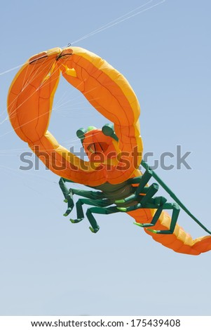 OSHKOSH, WI - JUNE 20:  Close up of an orange and green lobster kite fly high in the sky at the Kite Festival June 20, 2009 in Oshkosh, Wisconsin.