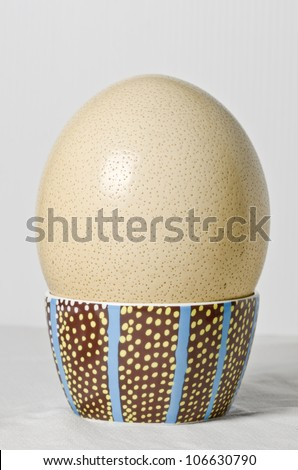 Ostrich Egg in blue,yellow and green bowl resembling large boiled egg. - stock photo
