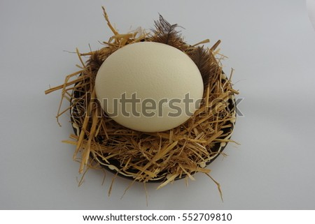 Ostrich egg on plate with straw and plumes