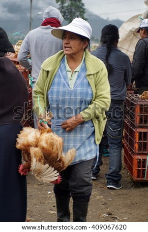 OTAVALO, ECUADOR - MARCH 5, 2016: Woman holds chicken with flapping wings upside down in the animal market