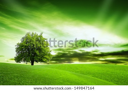 Our Green Planet - stock photo