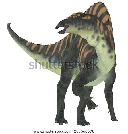 Ouranosaurus Herbivore Dinosaur - Ouranosaurus was a herbivorous hadrosaur dinosaur that lived during the Cretaceous Period of Africa. - stock photo