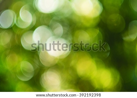 Out of focus round bokeh nature forest trees background design - stock photo