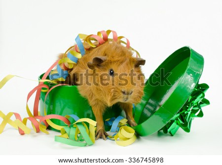 out of the box, get some action - stock photo