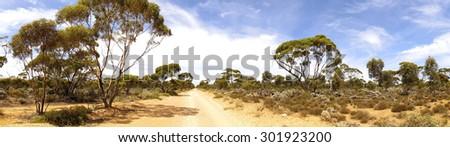 outback road, australia - stock photo