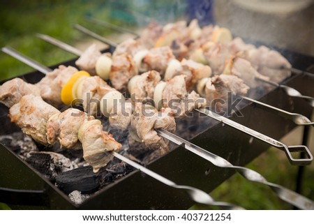 Outdoor BBQ Grill. Bbq grill flame. Shashlik on skewers closeup, raw and cooked.Juicy slices of meat prepare on fire (shish kebab). - stock photo
