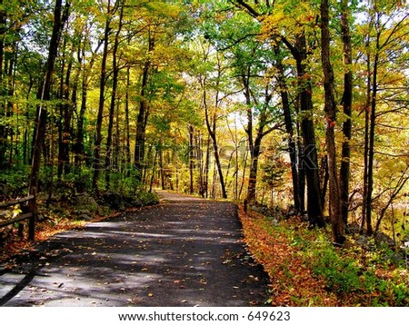 Outdoor Bike Trail in Autumn