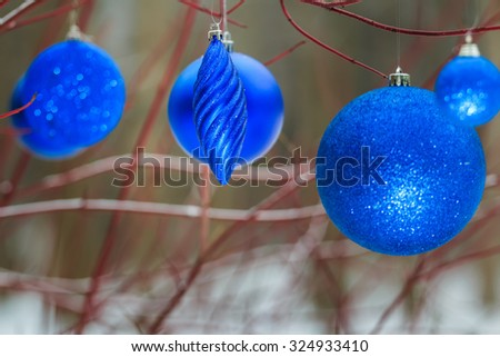 Outdoor Christmas decorations with ultramarine blue shiny bauble ornaments hanging on tree red branches - stock photo