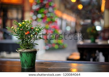 Outdoor coffee table in the gallery decorated for Christmas - stock photo