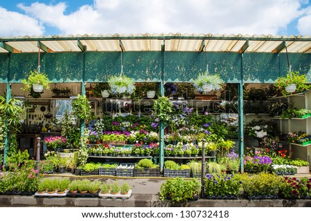 Outdoor flower shop in Paris, France - stock photo