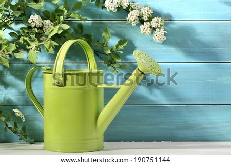 Outdoor gardening tool and flowers - stock photo