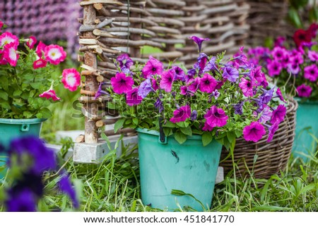 Outdoor gardening tools and azalea flowers near braided fence