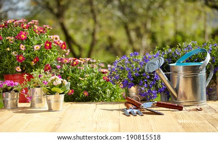 Outdoor gardening tools and flowers on old wood table  - stock photo