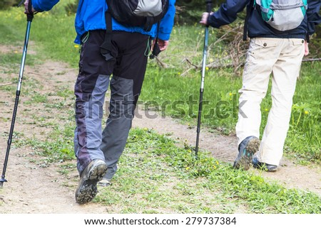 Outdoor Hikers with Trekking Poles and Trekking Equipment Walking in the Forest  - stock photo