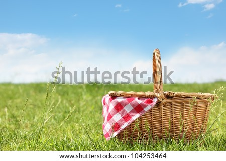 Outdoor picnic at sunny day - stock photo