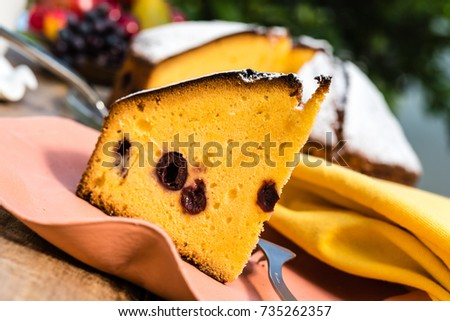 Outdoor picture of a piece of cherry vanilla cake
