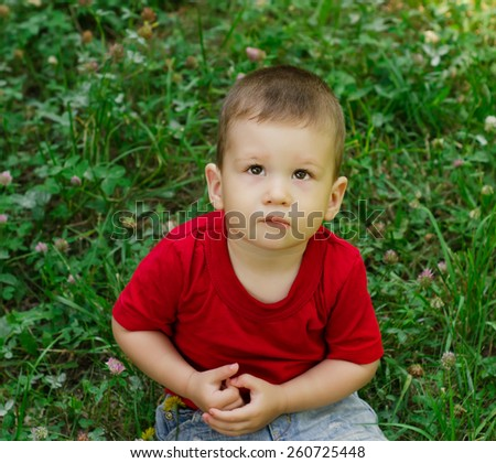 Outdoor portrait of cute baby boy sitting on the grass in summer park - stock photo