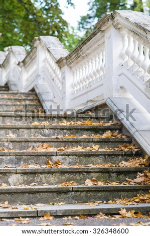 Outdoor retro style stairs with ornate railing, dry autumn leaf on steps - stock photo